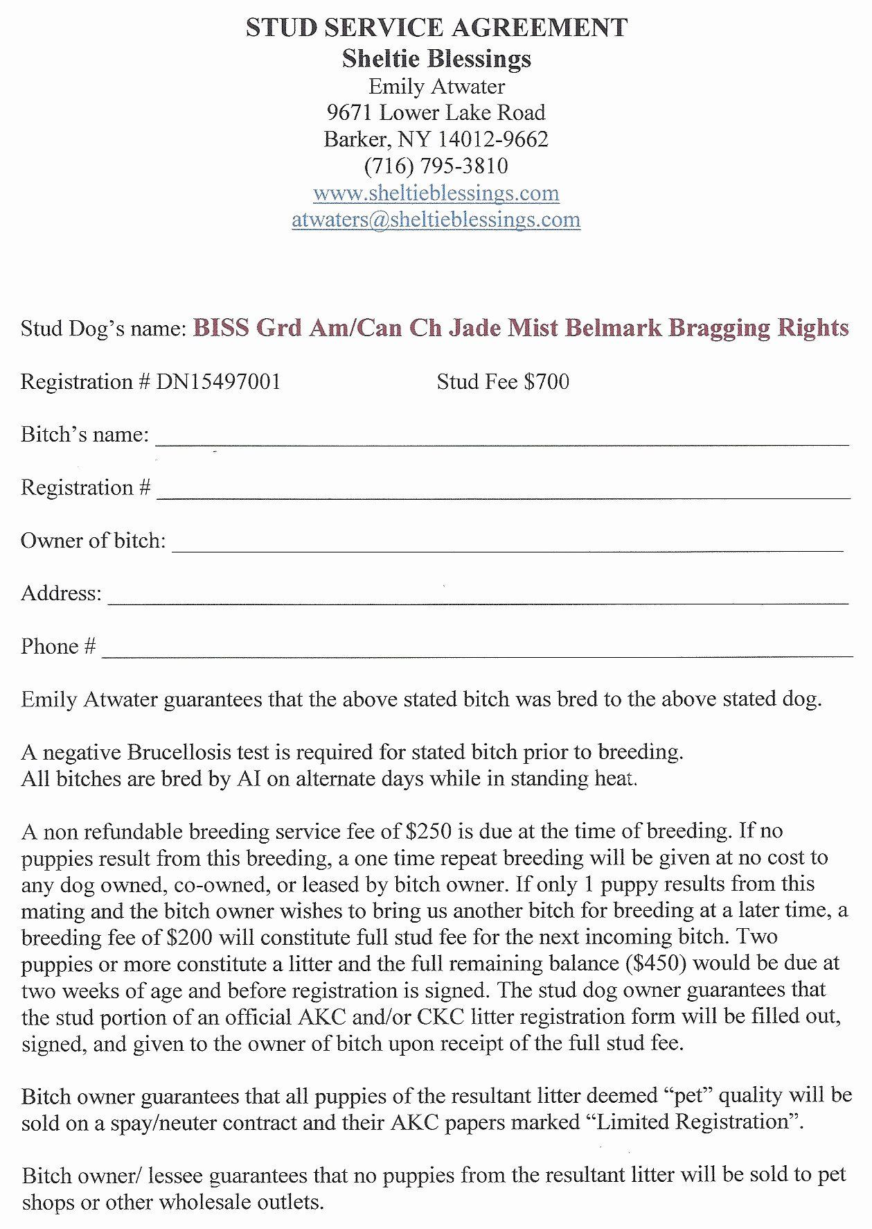Dog Breeding Contract Template Unique Spay And Neuter Contract Template Paramythia Docs In 2020 Contract Template Stud Dog Contract