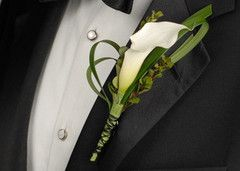 Our white miniature calla lily boutonnière looks striking on a groom or best man who's wearing a tuxedo or suit. White miniature calla lilies symbolize magnificent beauty,  true love, and purity. What makes it a perfect choice for a  groom's boutonniere is how well it complements a bride's white wedding gown.