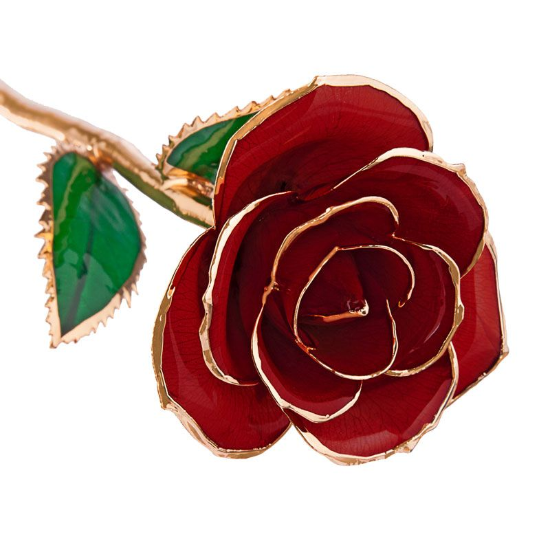 Valentines Day Red 24k Gold Dipped Rose Steven Singer Jewelers