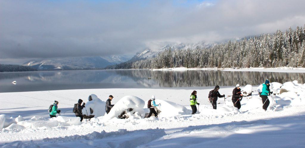 Top Picks For Winter Camping in Washington   Winter ...