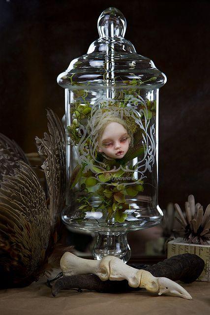 Bell Jar | Flickr: partage de photos!