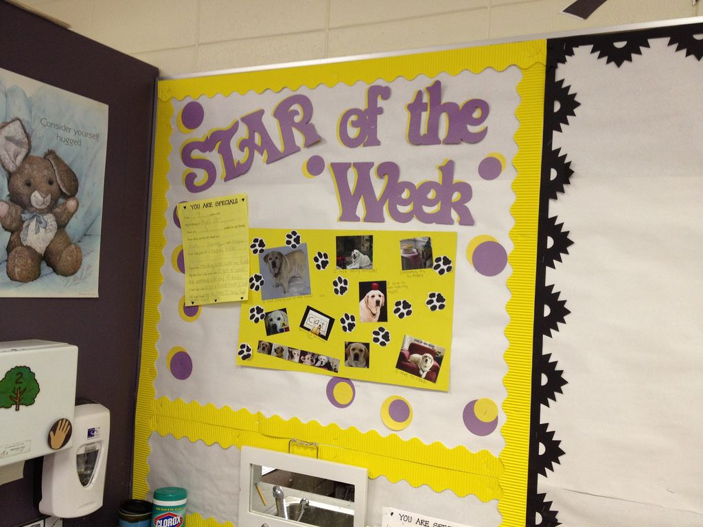 Student Recognition Display--Star of the Week | Employee recognition ...