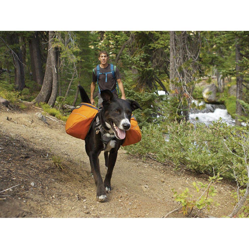 Ruffwear Approach Dog Pack Free Shipping Backcountry K