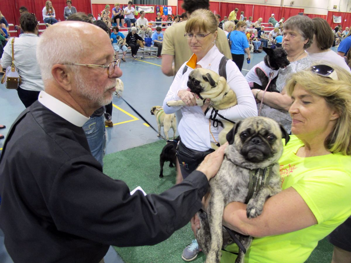 Father John Allen Blesses The Pugs At The Milwaukee Pug Fest