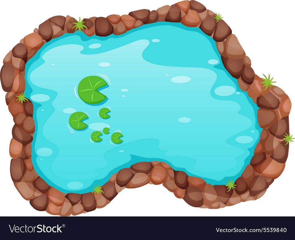 Free Pond Cliparts, Download Free Clip Art, Free Clip Art on Clipart Library
