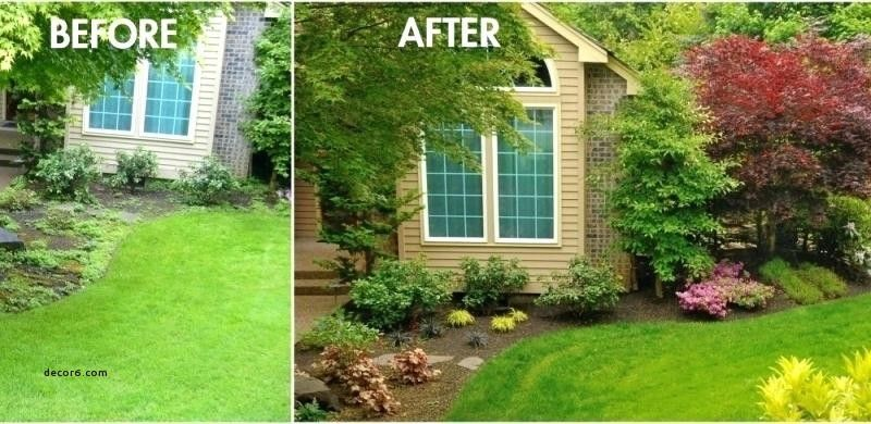 ideas curb appeal landscaping