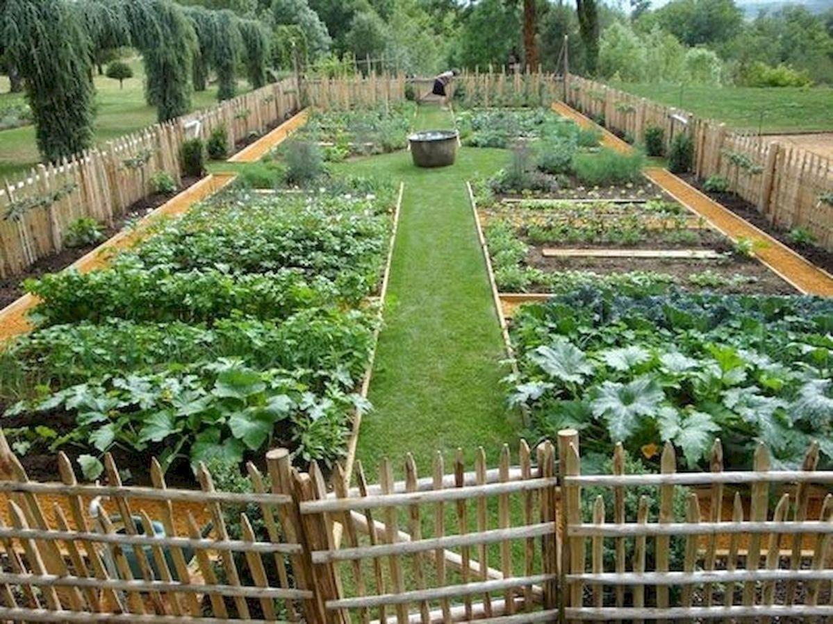 ✓9 Favourite Vegetables Garden Ideas VegetablesGarden   Garden ...