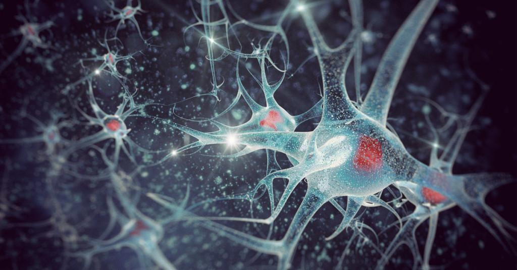 Neuroplastizität Spiele