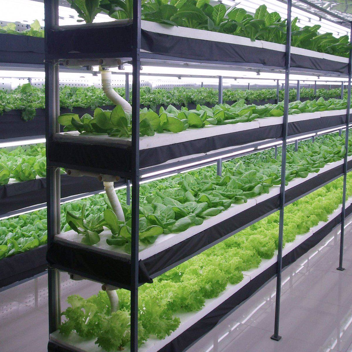 indoor greenhouse system