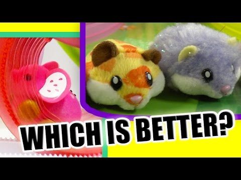Little Live Pets Lil Mouse Vs Hamster In A House Ny Toy Fair 2016 Little Live Pets Hamster Pets
