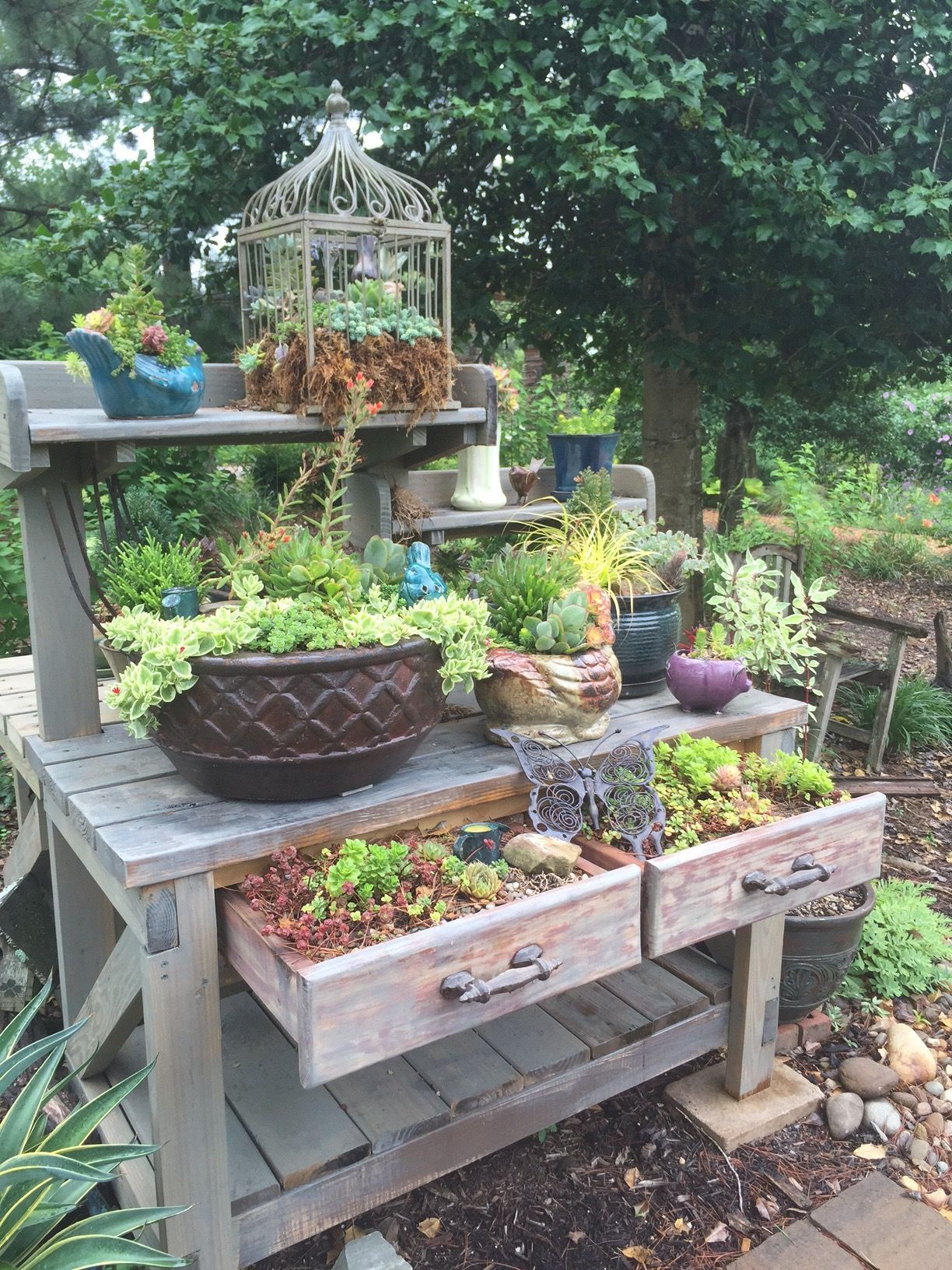 Outdoor Wooden Succulent Display Table Planters Drawers