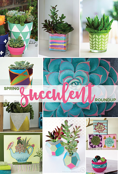 Trendy Spring Succulent Projects