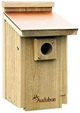 Creating Bluebird Habitat & Free Bluebird House Plans