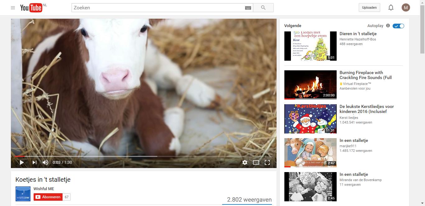 Koetjes in 't stalletje - YouTube