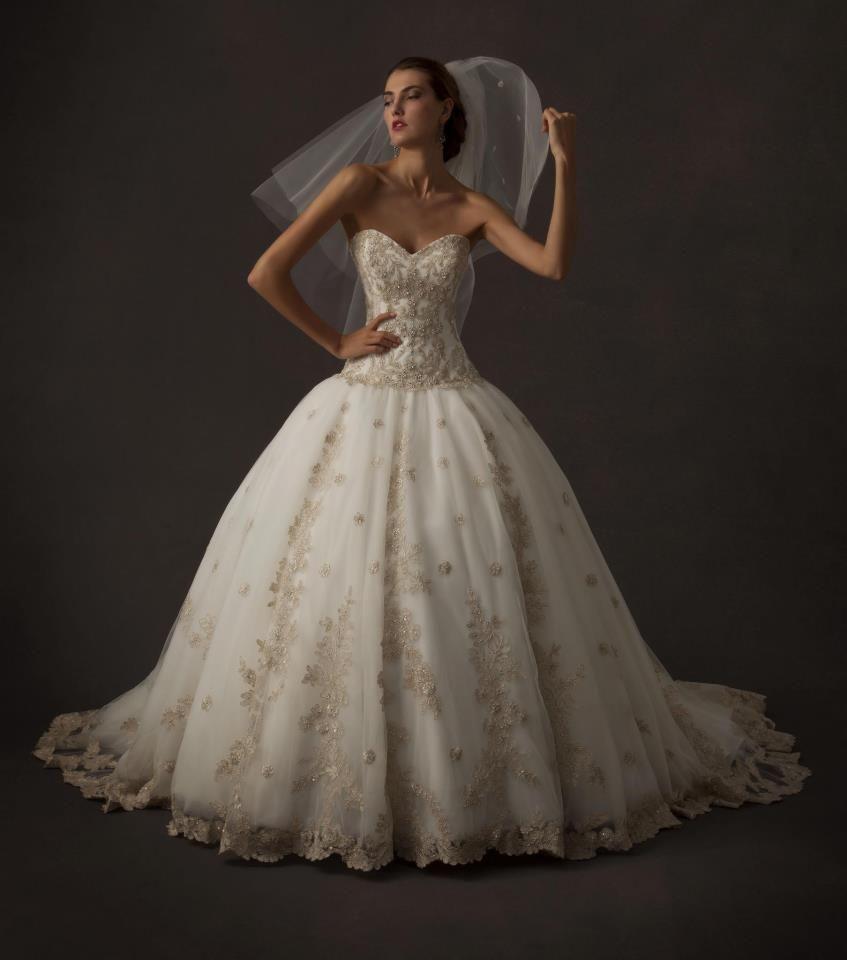Designer Wedding Gown Rental: This Will Be My Wedding Gown..added Some Twist