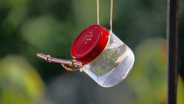 Sweet On Hummingbirds For The Home Pinterest Humming Bird