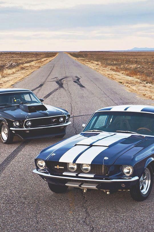 20 Hot Muscle Cars Photos You Would Defenitely Love