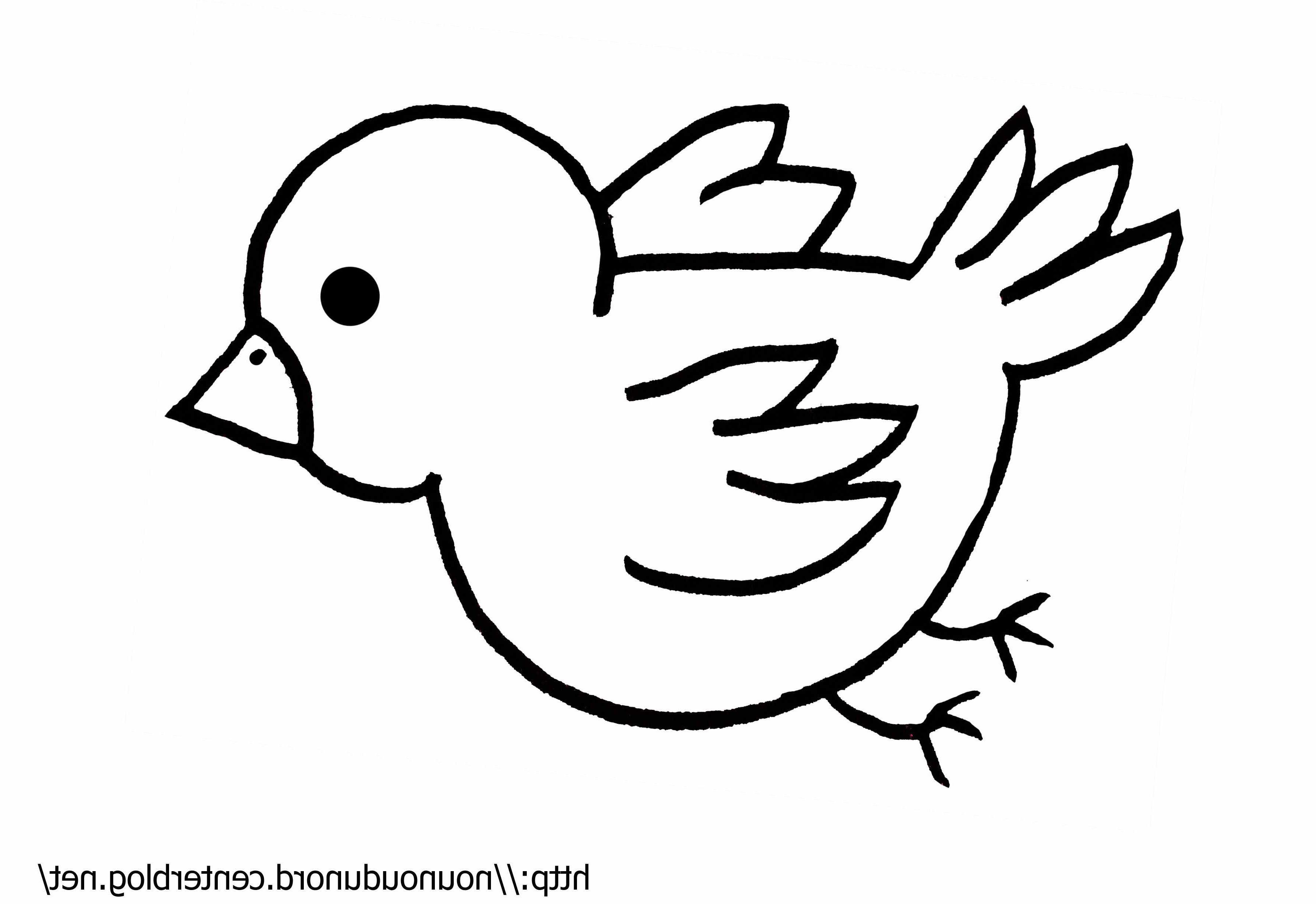 10 Cool De Avion Facile A Dessiner Photographie Dessin Oiseau Oiseau Coloriage Dessin Oiseau Facile