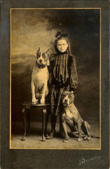 Girl With Leaning Dogs Vintage Dog Nanny Dog Dog Photos