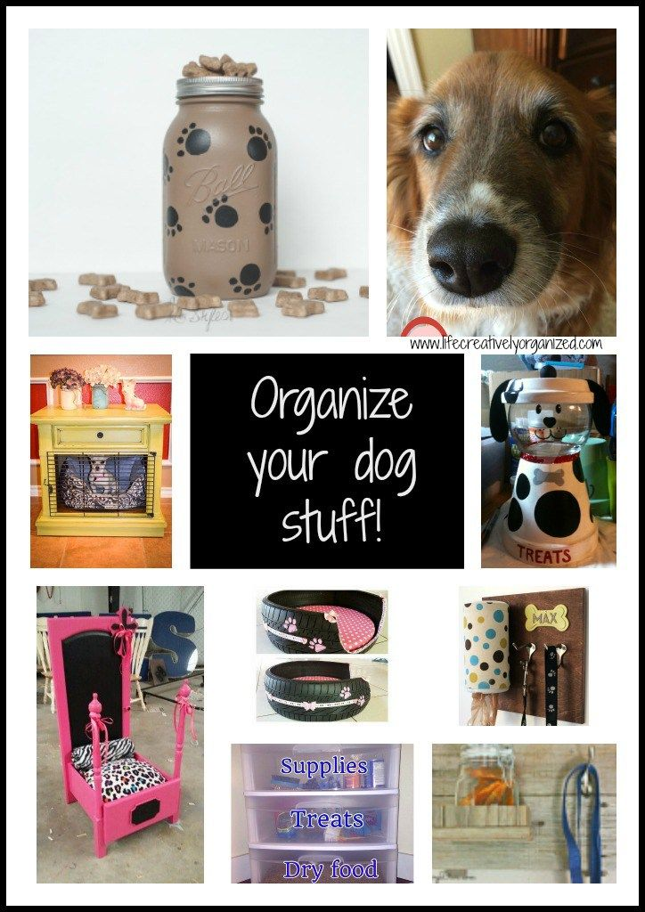 Dog Stuff How To Organize Your Dog Stuff