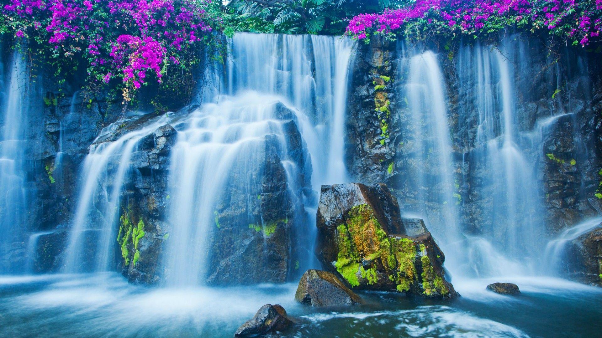 Crown Of Flowers On Beautiful Waterfalls Waterfall Wallpaper Waterfall Pictures Waterfall