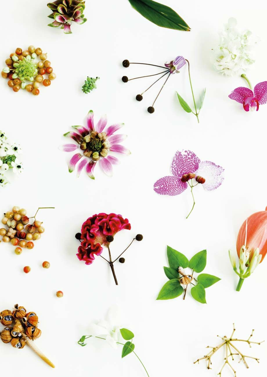 botanical [ボタニカル] | フェリシモ | 刺繍 | pinterest