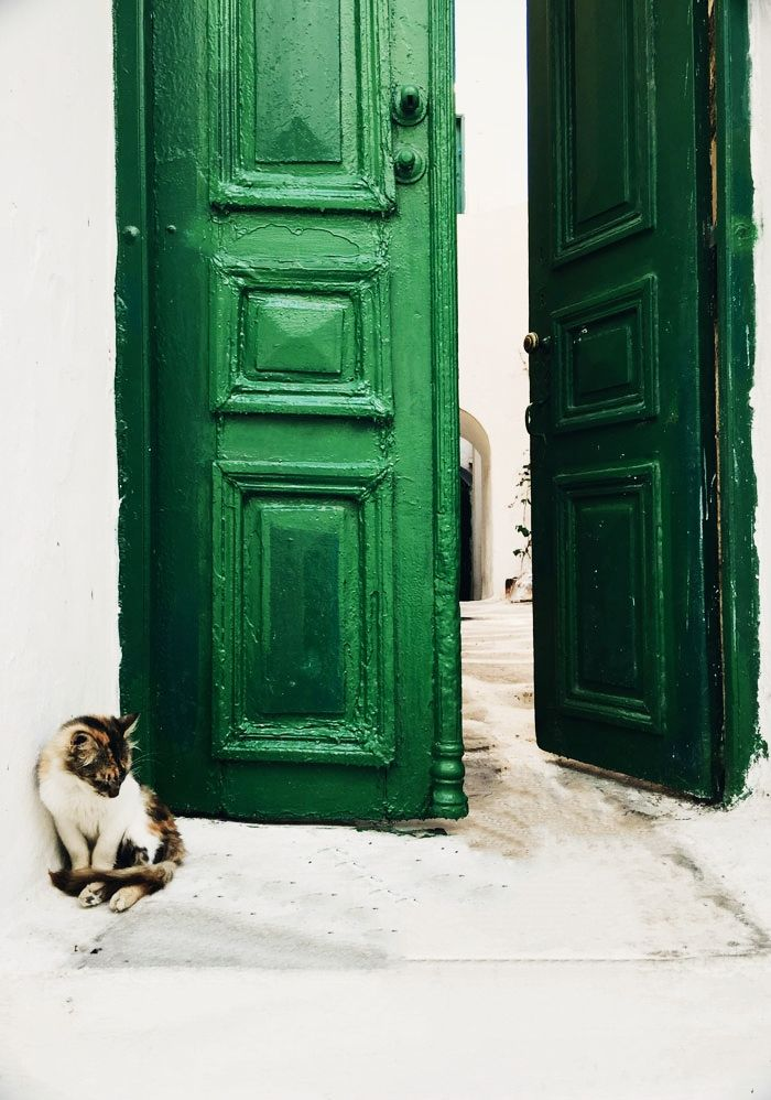 Green Door and Cat in Mykonos by sincerelyjules. & Mykonos with Mr. u0026 Mrs. Smith. u2013 Sincerely Jules | Greek Islands ...