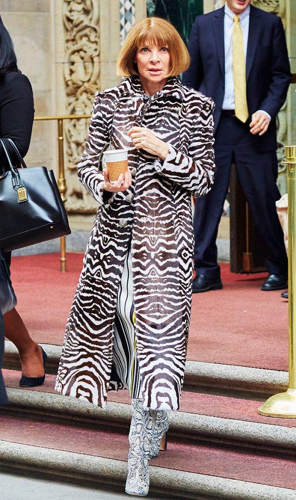 dress - Wear you Would Zebra print? video