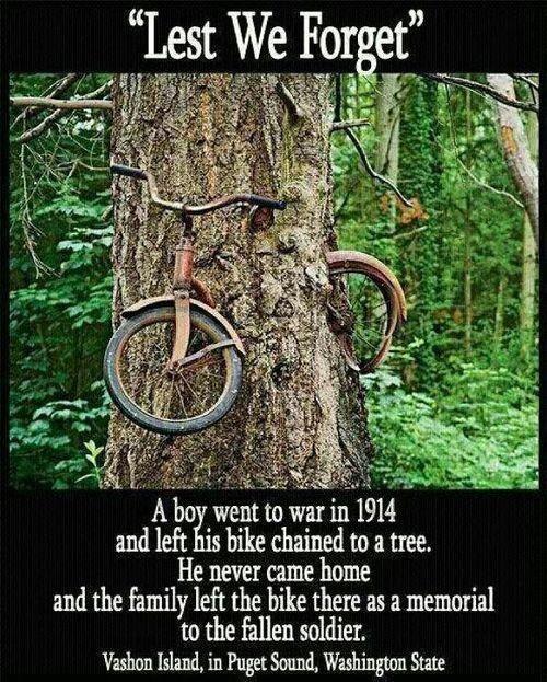 remembering tree remembering tree  ? bike,bikes,bike for 3 year old,bike for 2 year old,bike for life,bike force,bike for sale,bike for girls,bike for girl age 7,bike for girl age 9,bike for girl age 10,bike for girl age 6,bike for girl age 5,bike for girl age 8,bike for girl age 4,bike for girl age 3,bike for girl age 12,bike for baby,bike for boys,bike for beginners,bike for baby girl,bike for baby seat,biker mont,biker ceket,biker