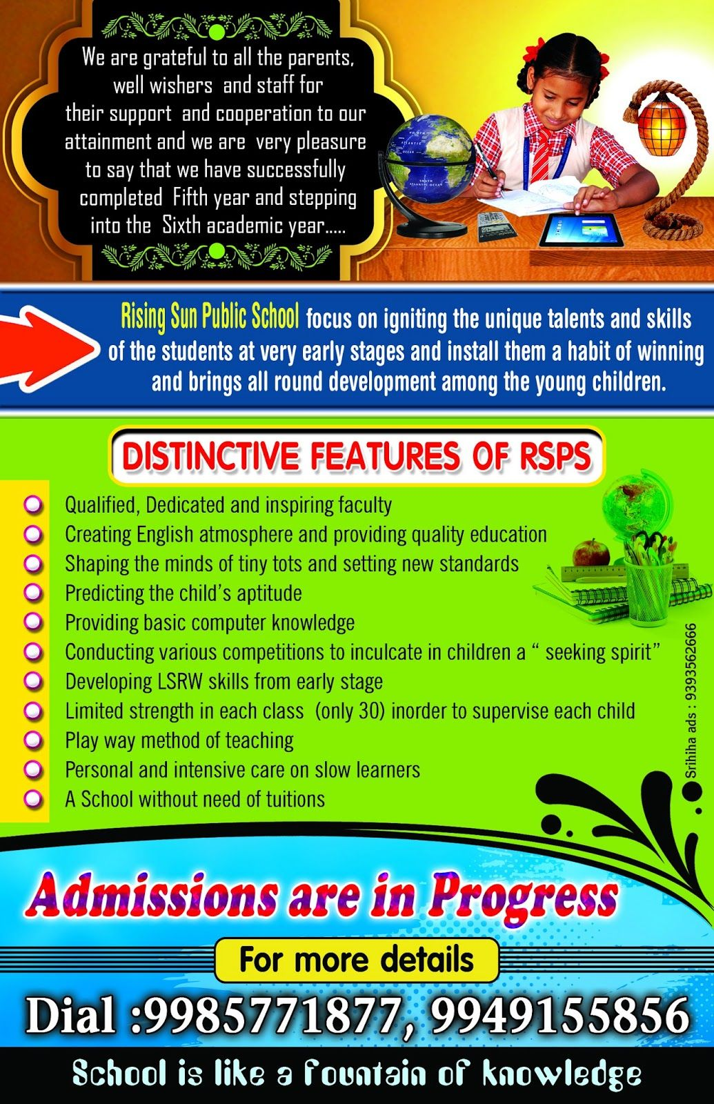 Professional School Brochure Design