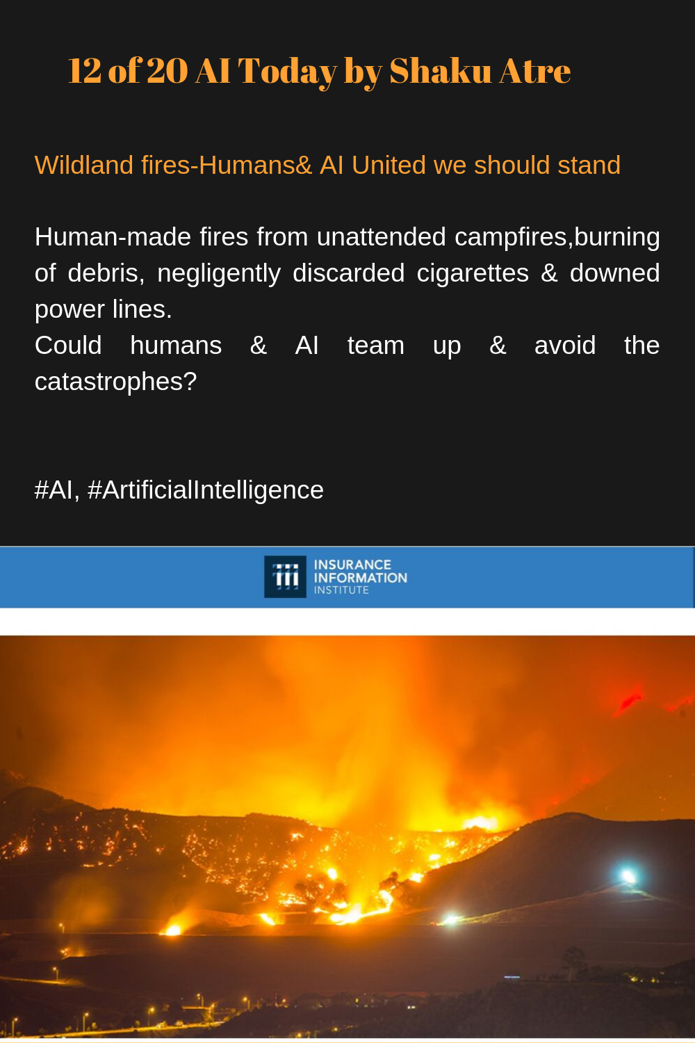 12 Of 20 Ai Today By Shaku Atre Wildland Fires Humans Ai United We Should Stand Human Made Fires From Unattended