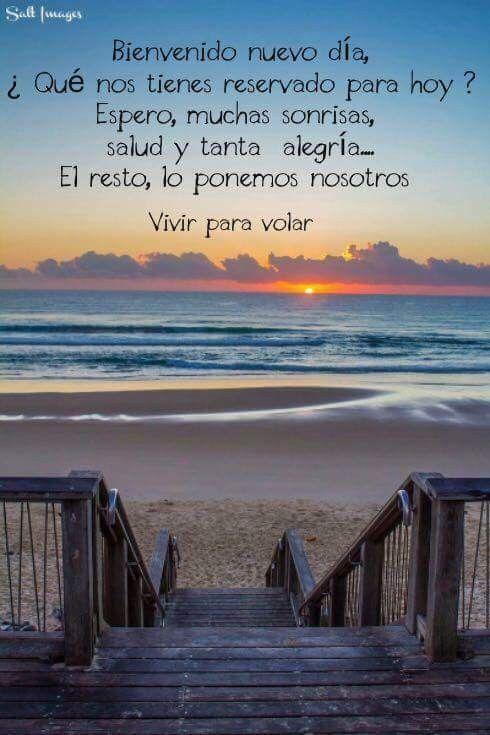 Reflexiones Positivas, Pensamientos Y Reflexiones, Frases De Sentimientos,  Emociones, Buenos Deseos, Buenas Noches, Buenas Vibras, Frases  Desmotivaciones, ...