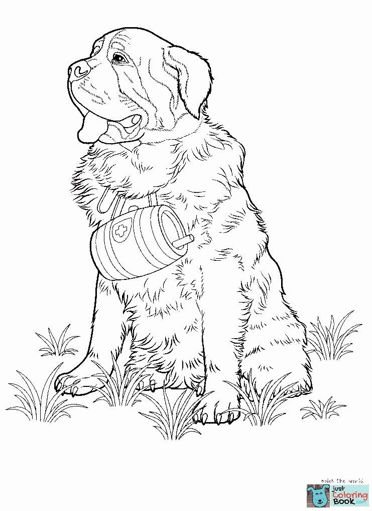 Dogs Coloring Pages Free Coloring Pages Throughout Street Dog Coloring Pages Ausmalbilder Ausmalen Thinking Day