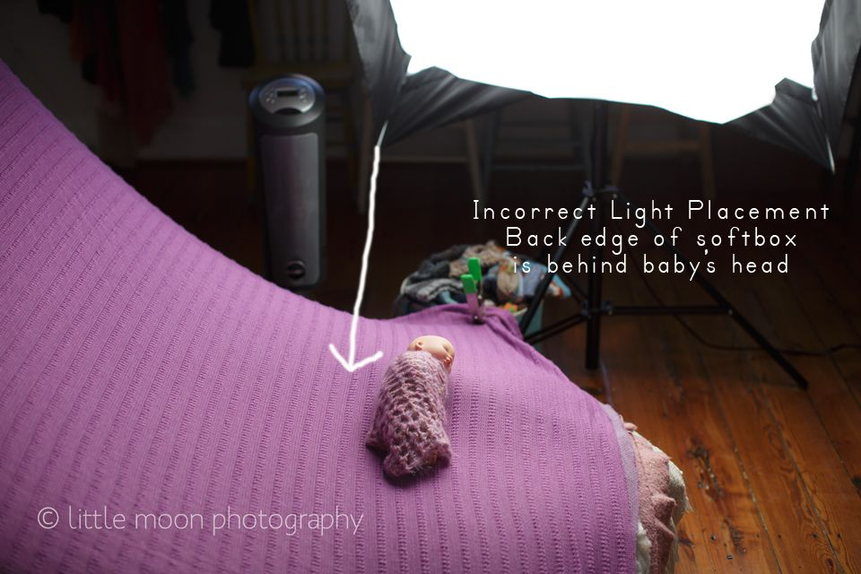 Newborn portrait photographer amber scruggs discusses essential newborn lighting techniques for beautiful newborn images with the westcott apollo softbox
