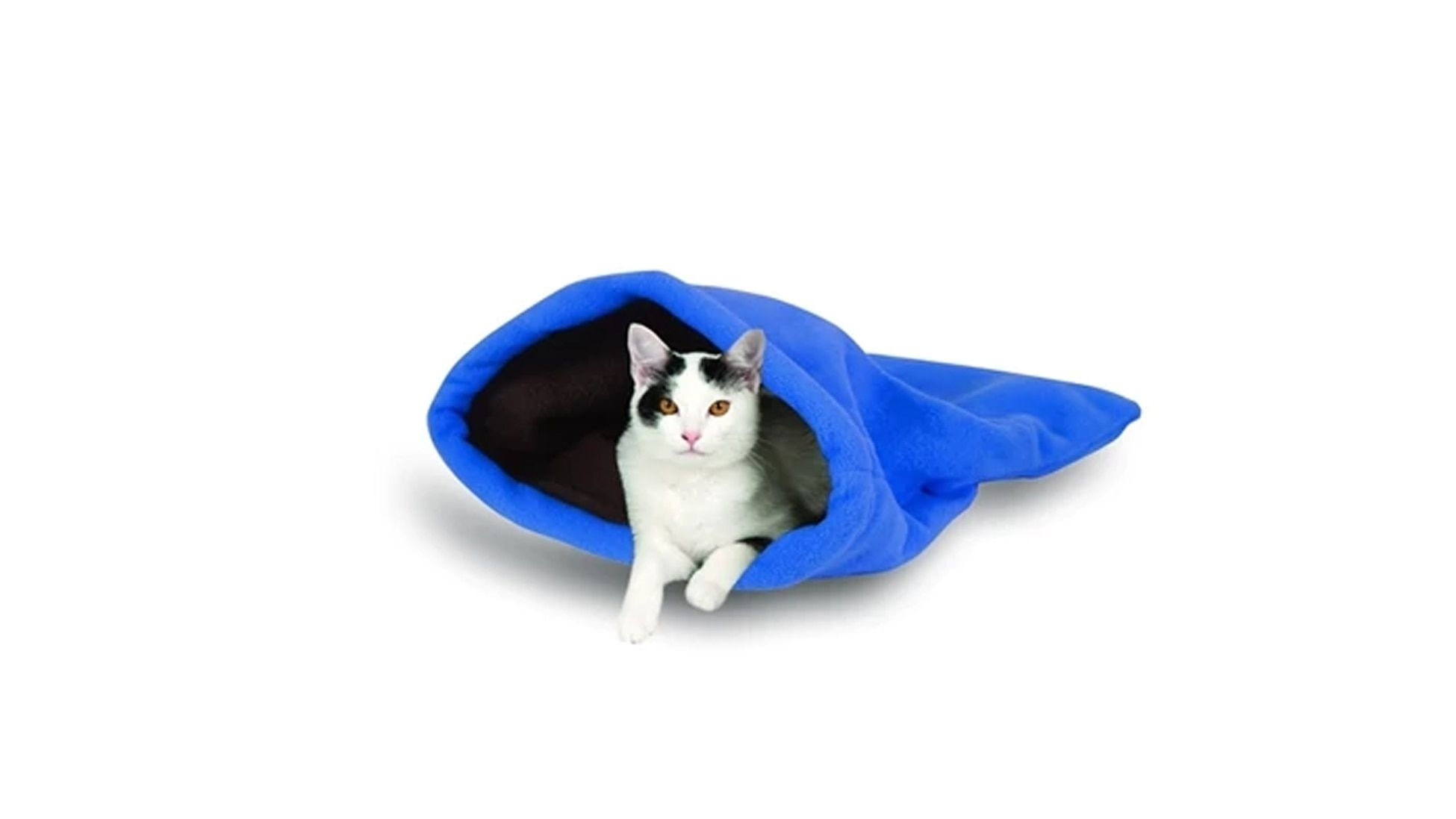 Skittish Scared Hiding Cat Daddy Cocoons To The Rescue Jackson Galaxy Cat Daddy Cat Illnesses Kitten Care