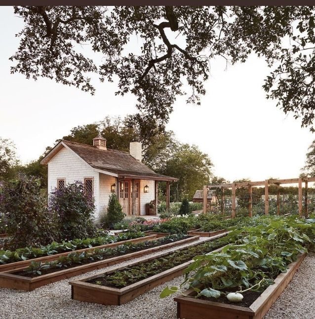 Waco Farm Garden: Chip And Joanna Gaines' Garden On Magnolia Farm, Where