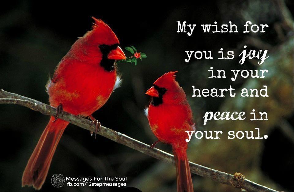 Idea by Rhonda on cornerstone Bird quotes, Cardinal