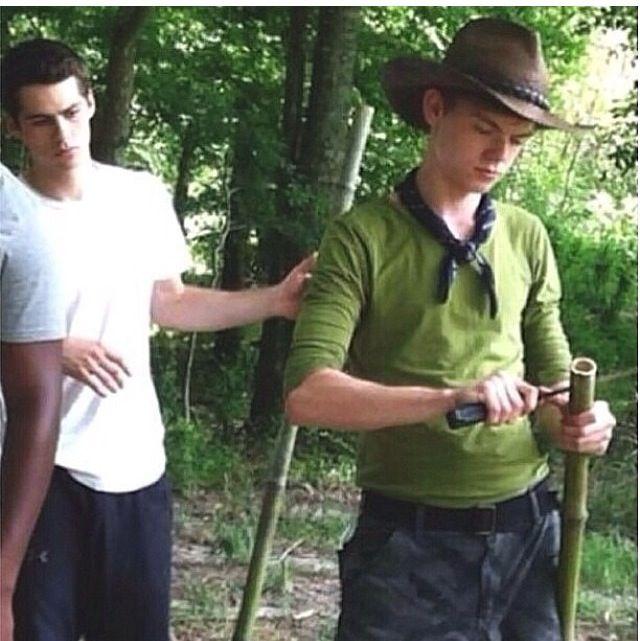 Safari with Newt