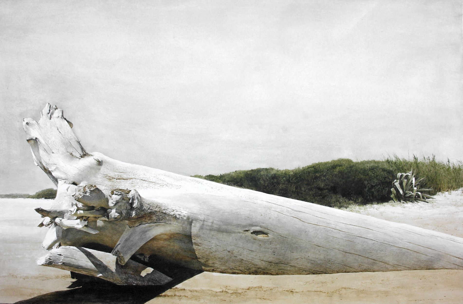 Marzio tamer the irminio at its mouth sicily cm 68 x for Marzio tamer