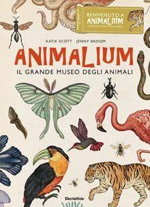 Animalium, il grande museo degli animali - Katie Scott, Jenny Broom
