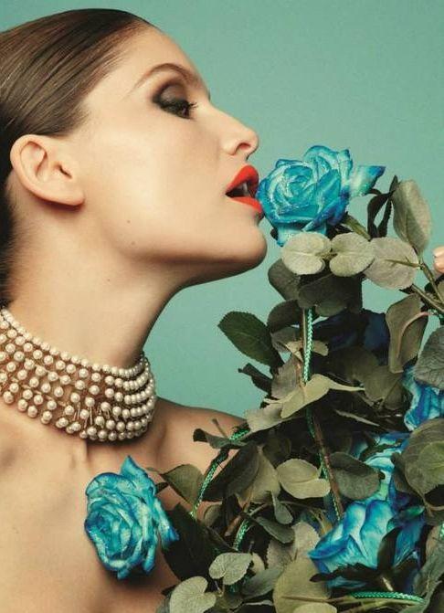 Blue Roses, gorgeous.