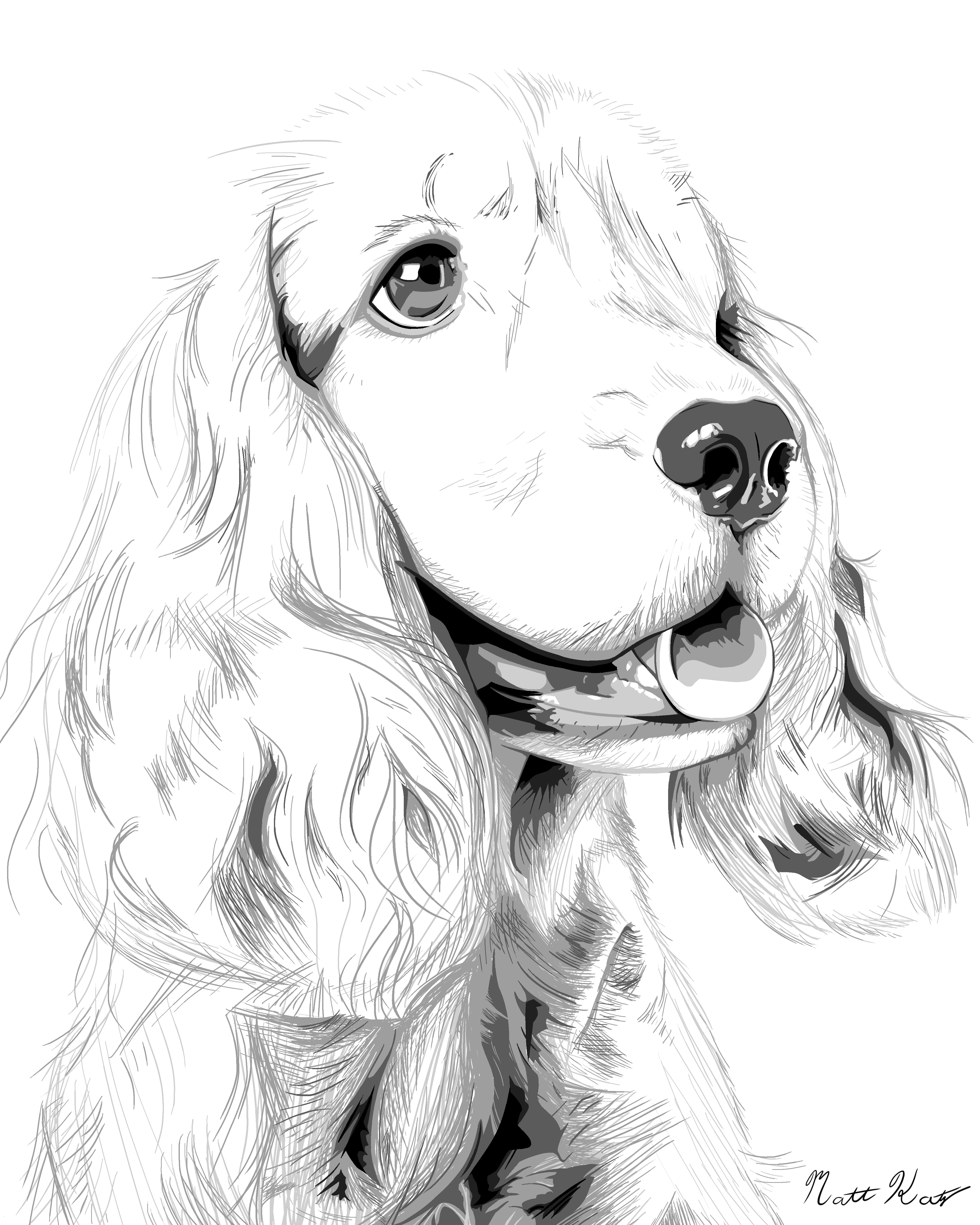 Cocker spaniel drawing recherche google drawings - Dessin de cocker ...