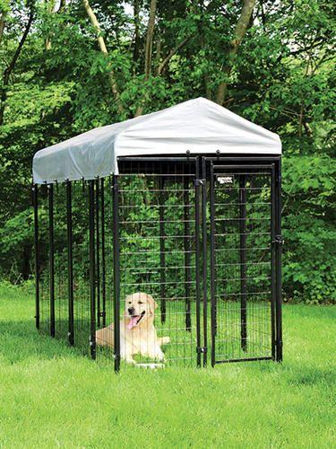 6 X 4 X 8 Boxed Kennel At Menards Metal Dog Kennel Dog