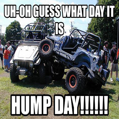 Jeep Wrangler Hump Day Dealerdirt Reviews Jeep Memes Jeep Humor Jeep Drawing