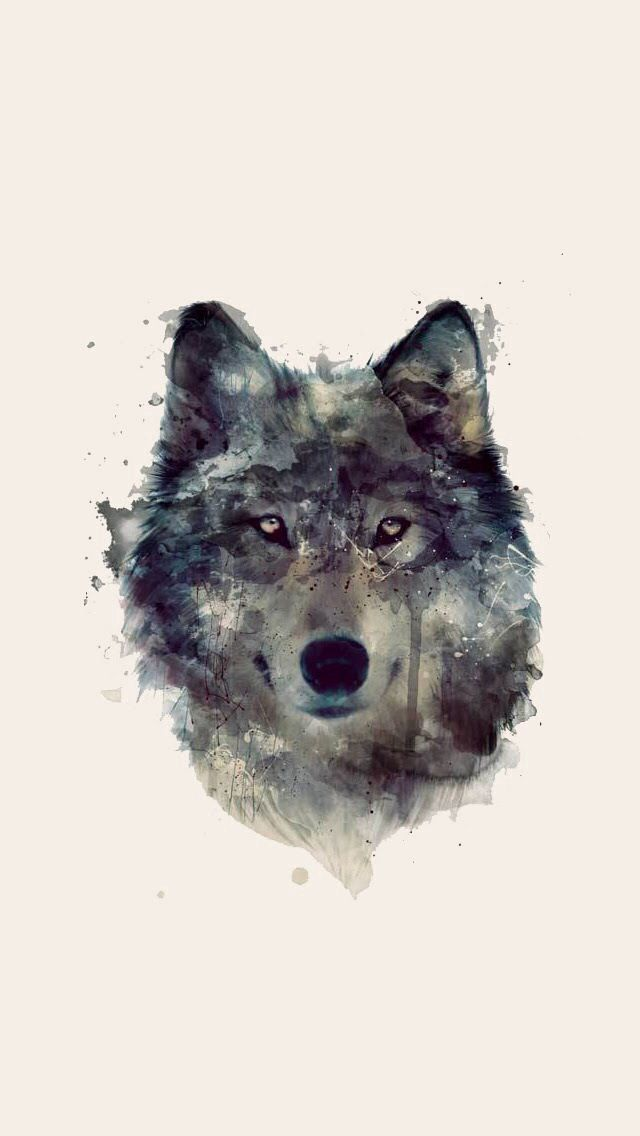 Wolf Wallpaper Watercolor Wolf Wolf Art Art Prints