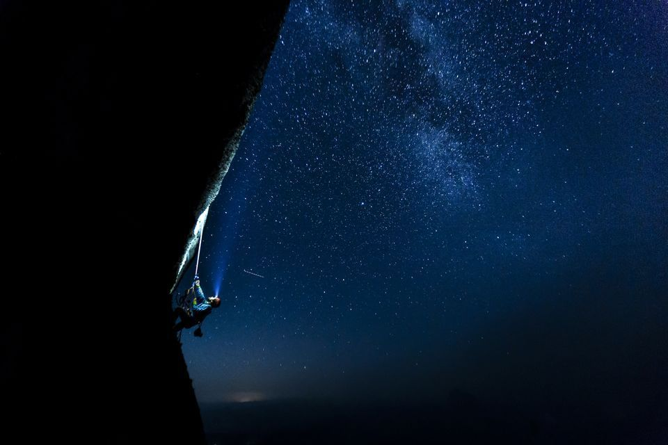 2016 National Geographic Nature Photographer of the Year   National Geographic
