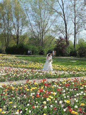 Garten Der Welt Wedding Gardens Of The World Berlin Germany Gardens Of The World Wedding Beautiful Flowers
