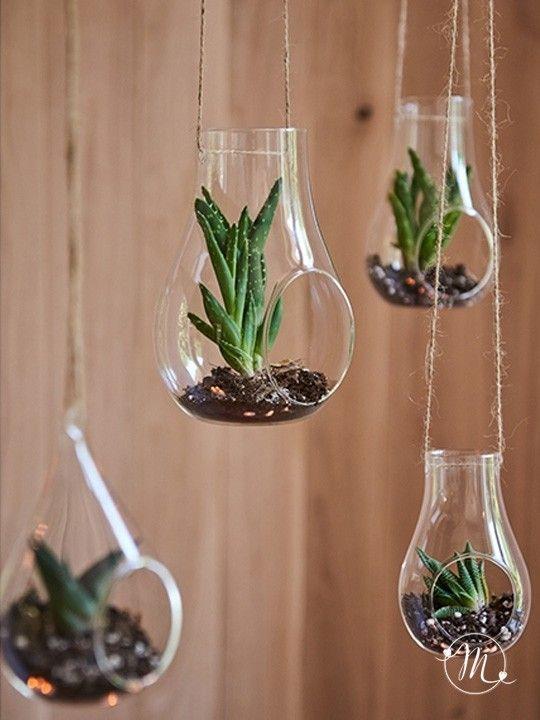 Set da 4 decorazioni in vetro varie misure. Per decorare ...