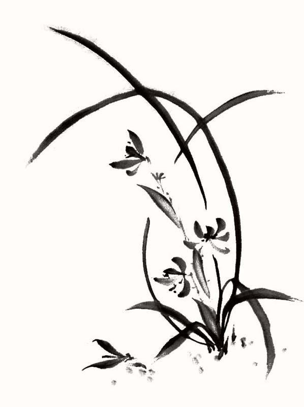 イラスト水墨画 墨絵 蘭 花 ぽじめくイラスト無料素材のイラスト屋