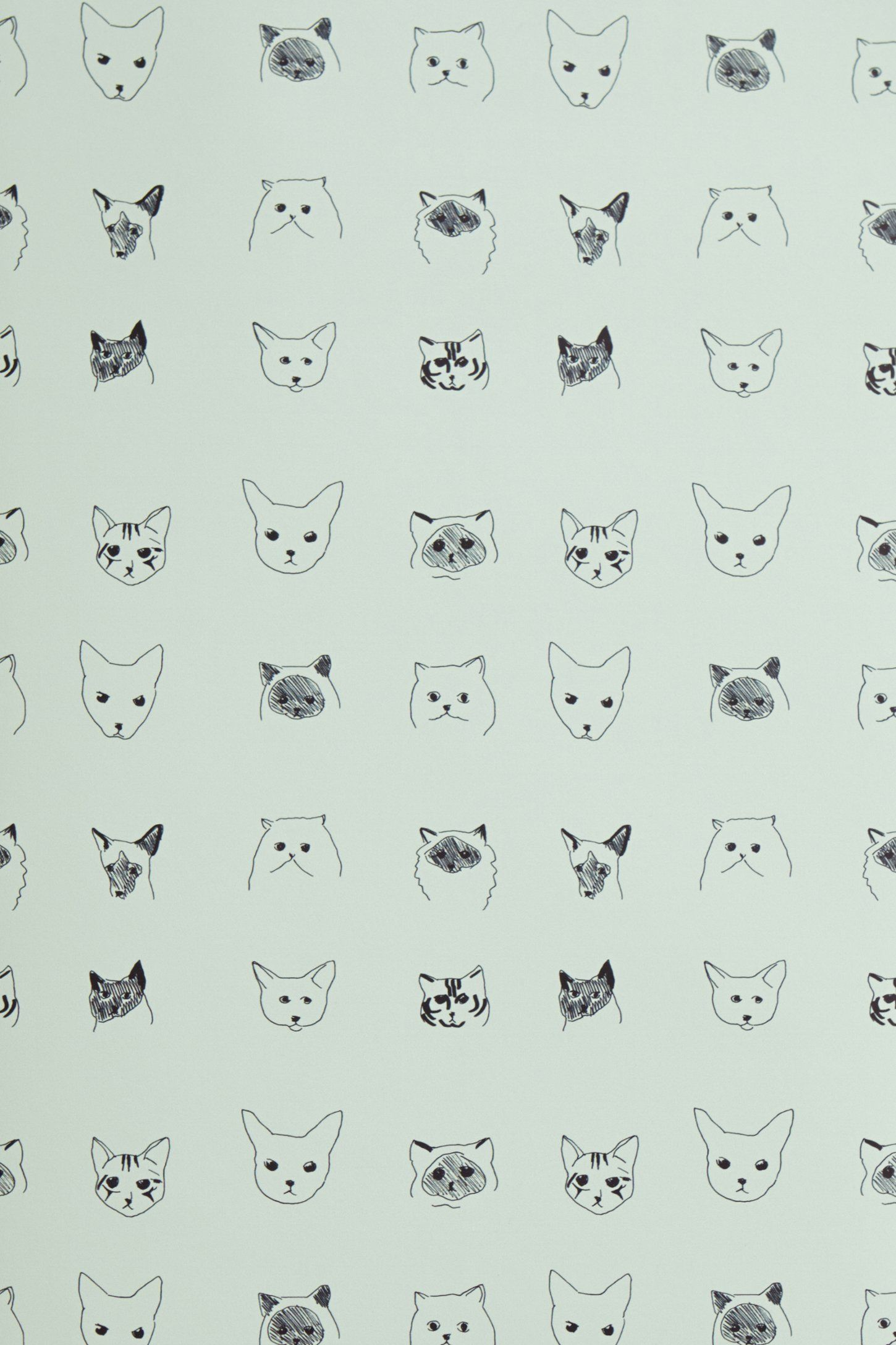 Cats Wallpaper H O M E S W E E T H O M E Cat Wallpaper